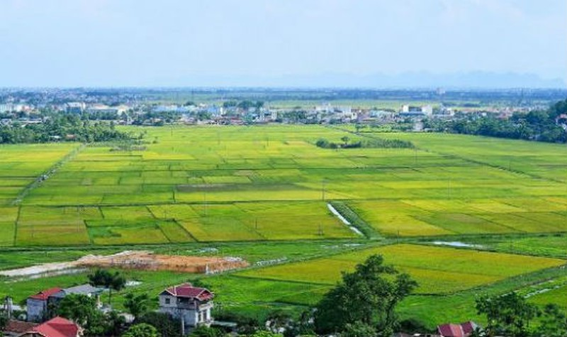 Đề xuất sửa Nghị định 91/2019 về XPHC lĩnh vực đất đai