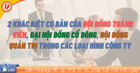 2 khác biệt cơ bản của Hội đồng thành viên, Đại hội đồng cổ đông, Hội đồng quản trị trong các loại hình công ty