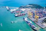 Đề xuất ưu đãi giá dịch vụ cảng biển, cắt giảm TTHC hỗ trợ doanh nghiệp
