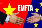 Nghị quyết 102/2020/QH14 về phê chuẩn Hiệp định EVFTA