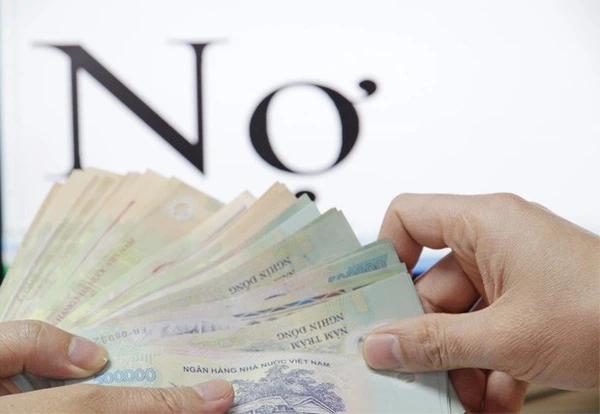 Điều lệ tổ chức, hoạt động của Công ty TNHH MTV Mua bán nợ Việt Nam