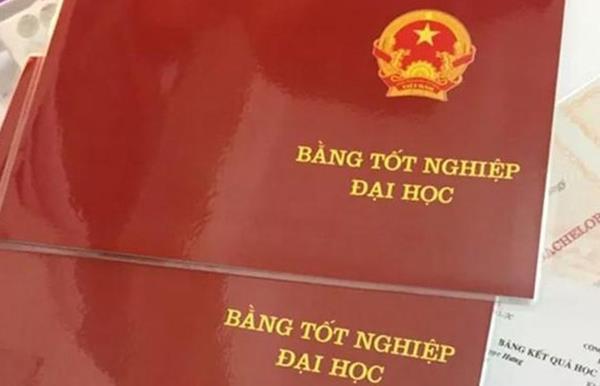 Đến 2030, cứ 100 người Việt Nam thì có 15 người có bằng đại học