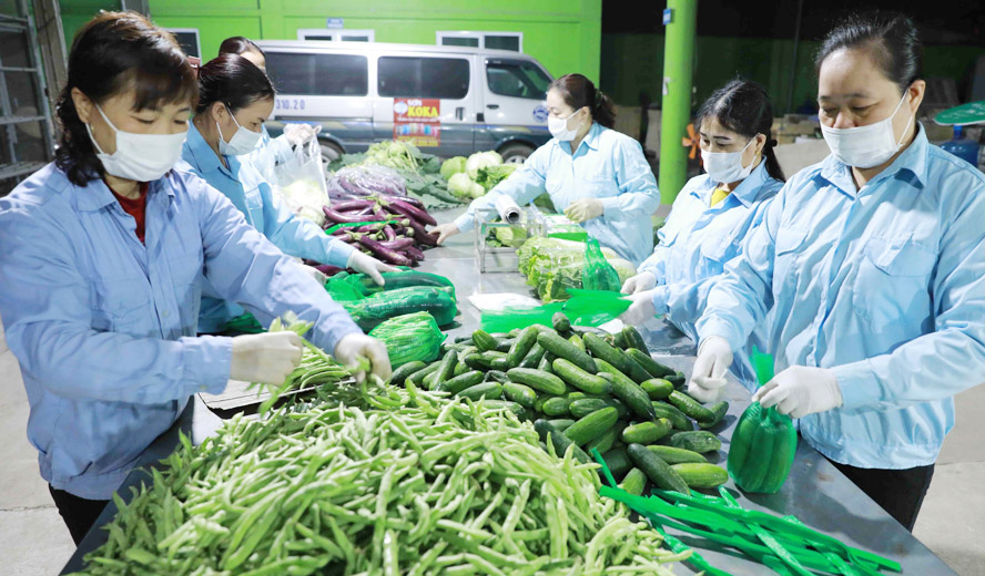 Các địa phương lập nhóm Zalo, Facebook để hỗ trợ tiêu thụ nông sản